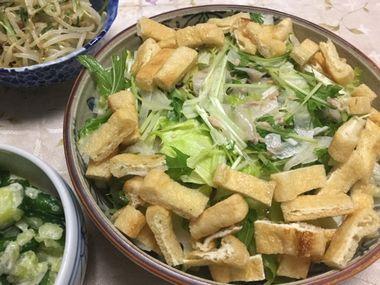 らっこが頑張って作った油あげのサラダです。レタスと水菜と玉ねぎとツナが混ざっています。