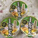 こーぎー家で常備しているカップうどんの「関西風おうどん」です。