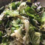 らっこが作ったレタスと海藻の温サラダ、塩昆布と塩コショウ味です。