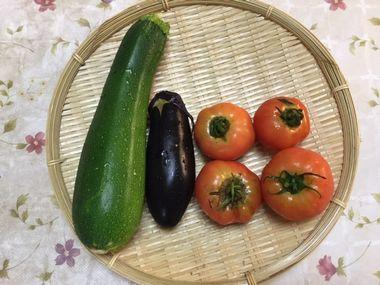 ズッキーニ1本、ナス1本、小ぶりなトマトが4個、ざるの上にのっています。