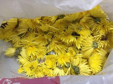 袋にいっぱい菊の花です。