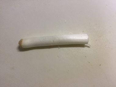 長ネギです。