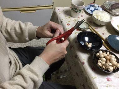 こーぎーが、慣れた手つきで銀杏の殻を割っている様子です。