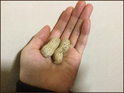 豆まき用の落花生です。