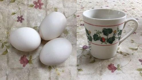 卵3個とマグカップ1個です。