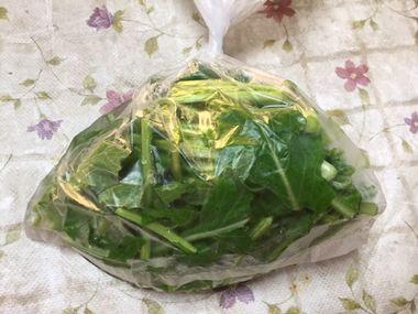 カブの葉っぱの漬物を作っています。