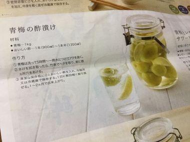 青梅の酢漬けのレシピです。