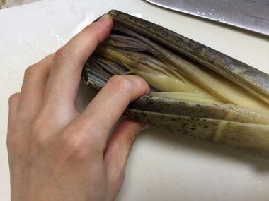 タケノコの皮をむこうとしています。