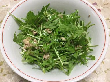 ツナと水菜のサラダです。