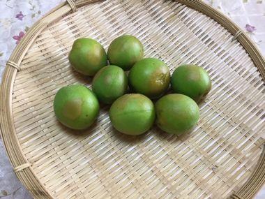 ざるに上げた茹で梅です。