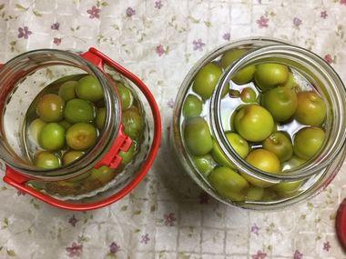 浸りきっていない梅の実です。