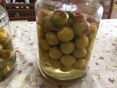 おいしい梅酢漬けの翌日の様子です。