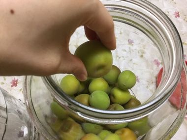 瓶に梅を詰めています。