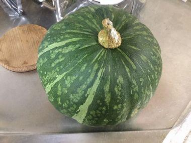 こぎ叔父さんから頂いたかぼちゃです。