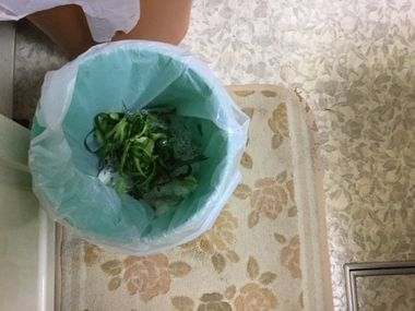 ゴミ箱の中のきゅうりの皮です。