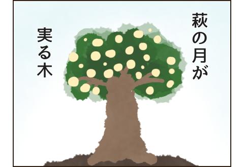 萩の月が実る木のイメージ