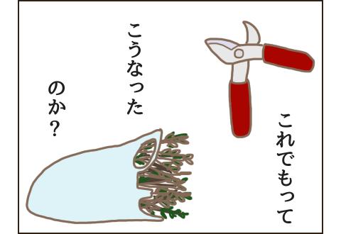 剪定鋏とビニール袋に入った選定された枝
