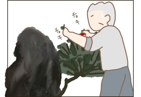 怪我をしたのに庭木の剪定をしているこぎ父