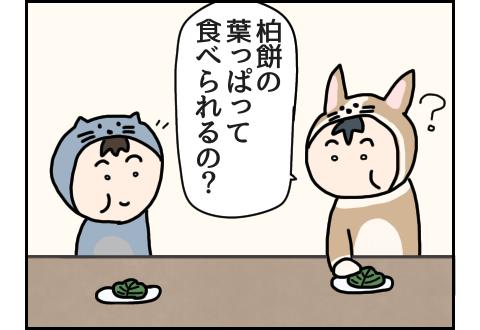 柏餅の葉っぱが食べられるのか尋ねるこーぎー